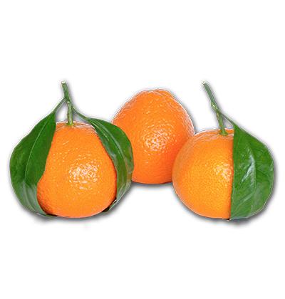 clementine_prodotti_dambruoso_srl